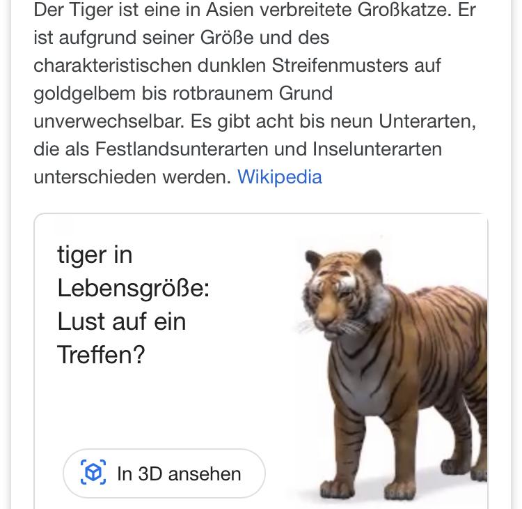 Google VR Tiger